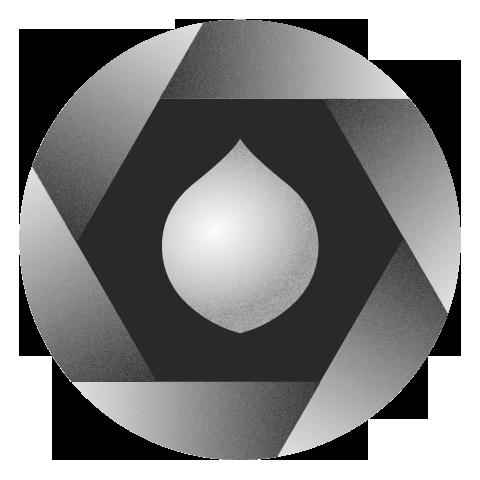 Logo Onion Grey copia